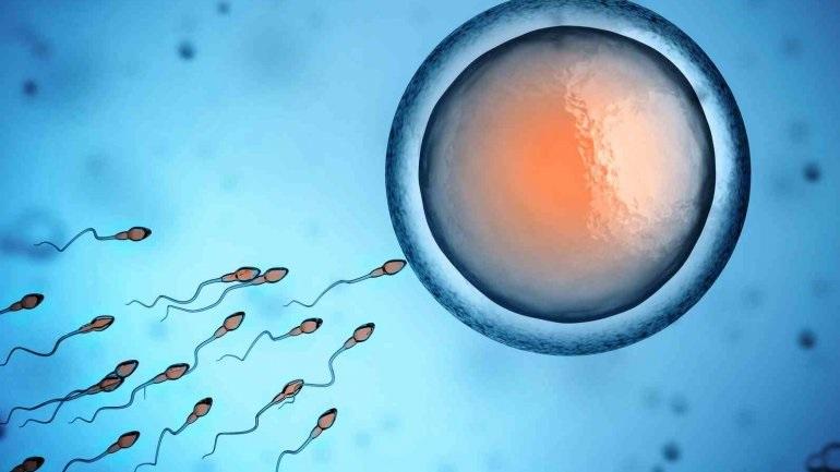 Το ένα πέμπτο των γυναικών που χρησιμοποιούν τα κατεψυγμένα ωάριά τους γίνονται μητέρες