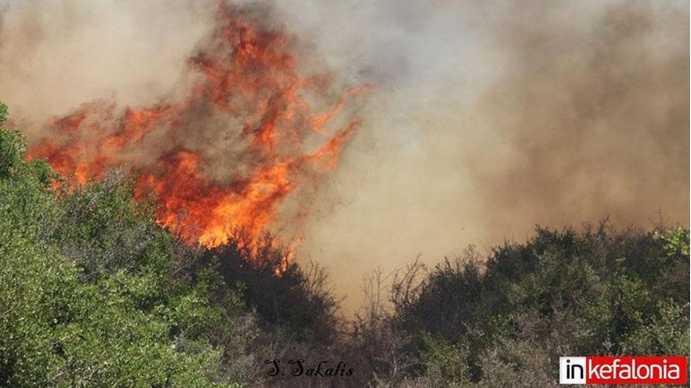Σε ύφεση η πυρκαγιά που εκδηλώθηκε σε δασική έκταση στην περιοχή Κεραμειές